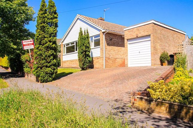 Thumbnail Detached bungalow for sale in Ghyllside Avenue, Hastings, East Sussex