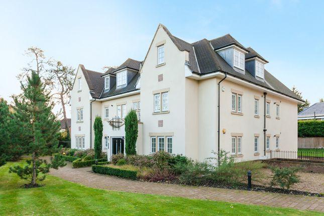 Thumbnail Flat to rent in Packhorse Road, Gerrards Cross, Buckinghamshire