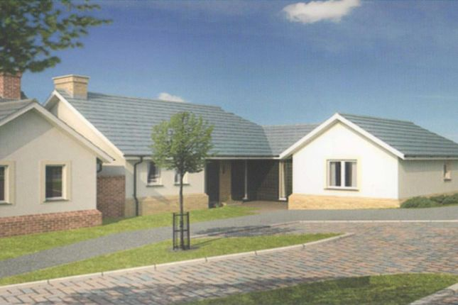 Thumbnail Bungalow for sale in Molesworth Way, Holsworthy