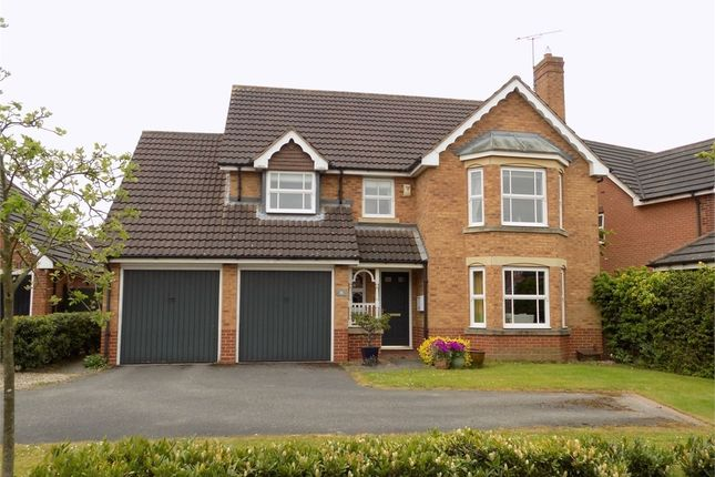 Thumbnail Detached house for sale in Fulmar Way, Gateford, Worksop, Nottinghamshire