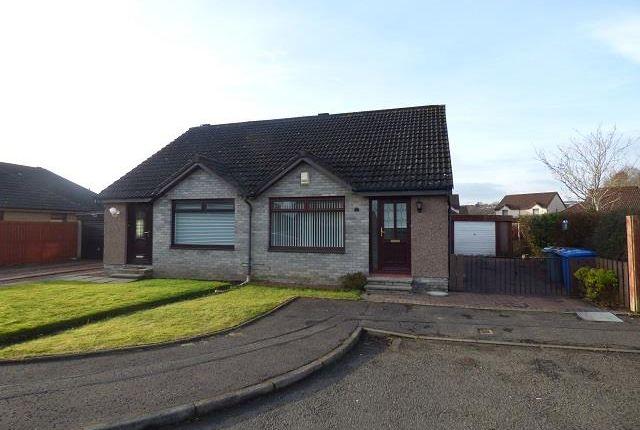 Thumbnail Bungalow to rent in Kirkfieldbank Way, Hamilton