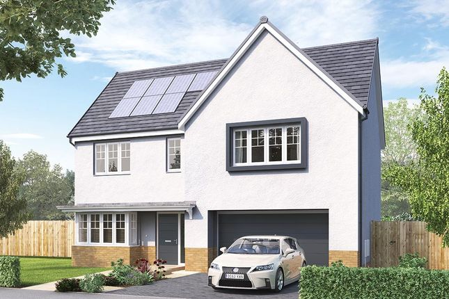 """Thumbnail Detached house for sale in """"The Welbury"""" at Aurs Road, Barrhead, Glasgow"""