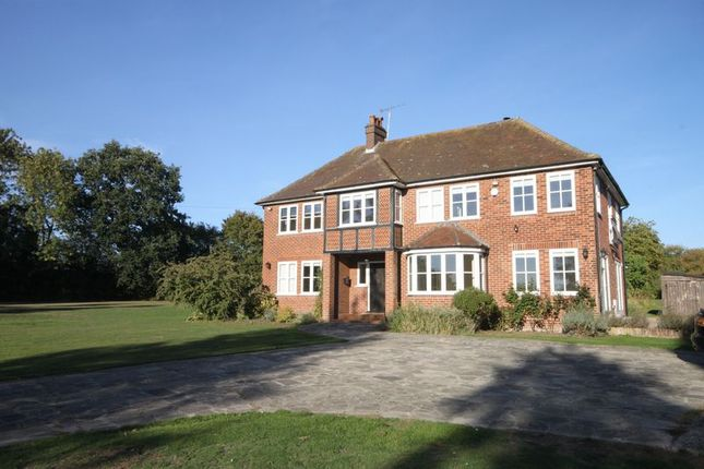 Thumbnail Detached house to rent in Whempstead Road, Benington, Stevenage