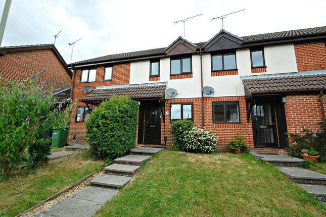Thumbnail Terraced house to rent in Balmoral Way, Petersfield