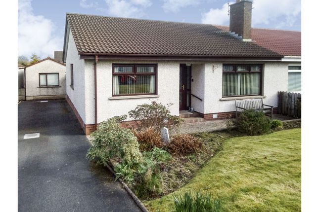 Thumbnail Semi-detached bungalow for sale in Ashcroft Close, Lisburn