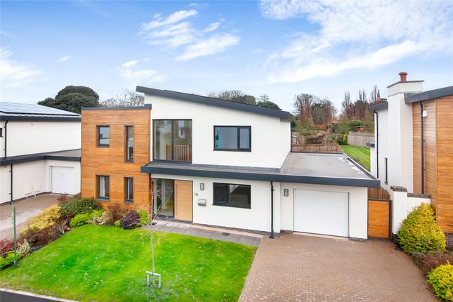 Thumbnail Detached house for sale in Holland Park, Exeter