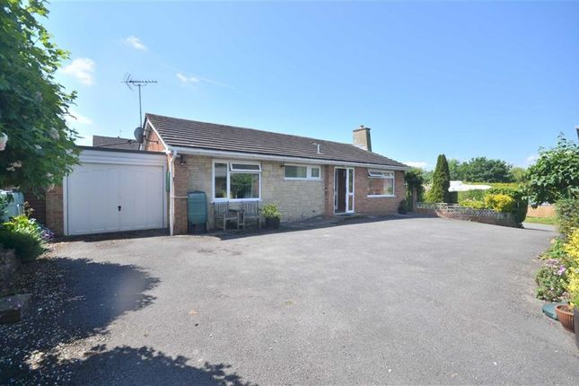 Thumbnail Bungalow for sale in Rea Lane, Hempsted, Gloucester