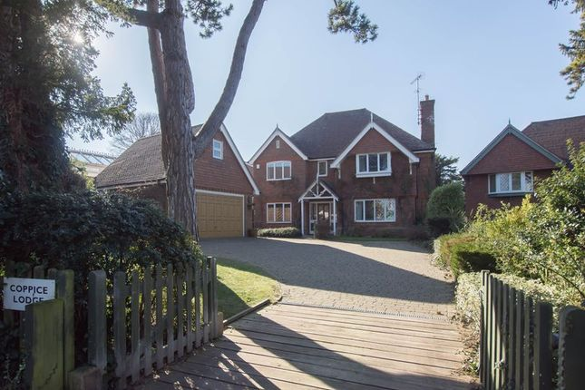 Thumbnail Detached house for sale in Church Cliff, Kingsdown, Deal