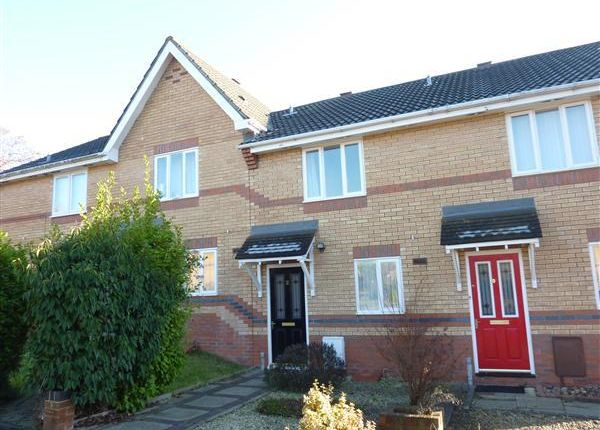Thumbnail Terraced house to rent in Garvey Close, Thornwell, Chepstow