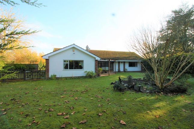 Thumbnail Detached house for sale in The Pastures, Cherry Lane, Browston, Great Yarmouth