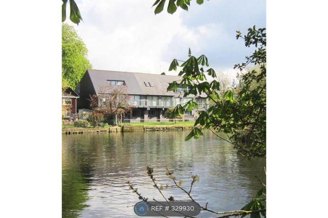 Thumbnail Semi-detached house to rent in Tiddington Road, Stratford Upon Avon
