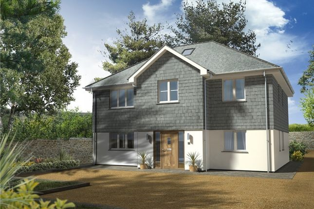 Thumbnail Detached house for sale in Wheal Rose, Scorrier, Redruth