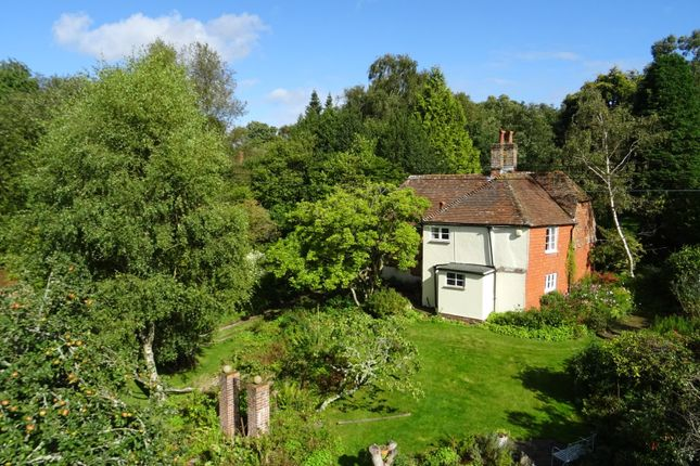 Thumbnail Detached house for sale in Newtown Common, Newbury