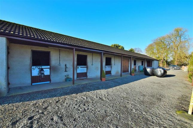Stable Block of Grainsby Lane, Tetney, Lincolnshire DN36