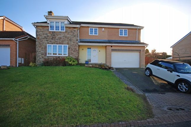 Thumbnail Detached house for sale in Percy Close, Hexham