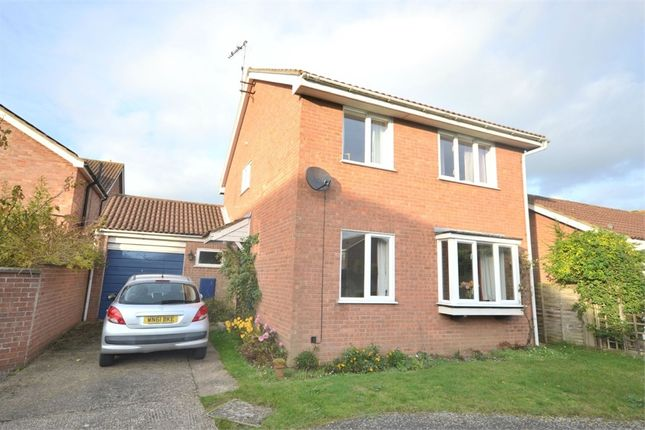 Thumbnail Detached house for sale in Fountaine Grove, South Wootton, King's Lynn