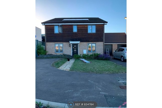 Thumbnail Detached house to rent in Redwing Place, Corby