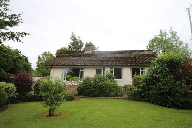 Thumbnail Bungalow for sale in Cabra Road, Hillsborough