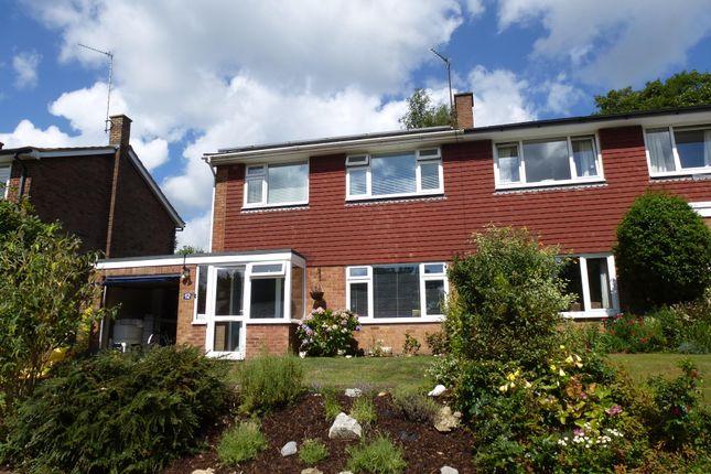 Thumbnail Semi-detached house to rent in Coniston Avenue, Tunbridge Wells