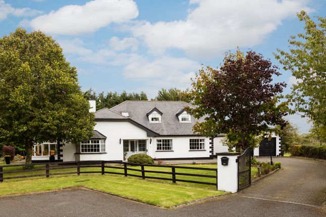 Thumbnail Detached house for sale in Westwinds, Mabestown, The Ward, County Dublin