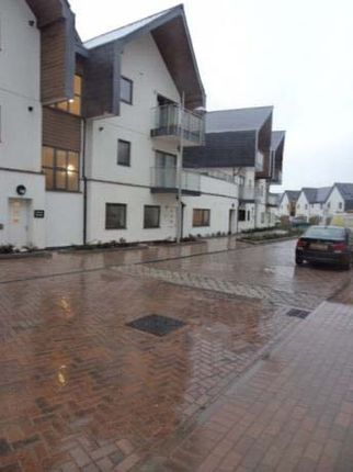 Thumbnail Flat to rent in Orchid Way, Torquay, Devon