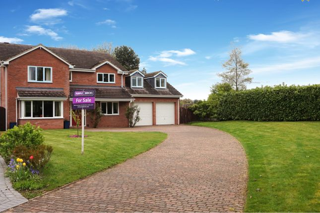 Thumbnail Detached house for sale in Mulberry Close, Newport