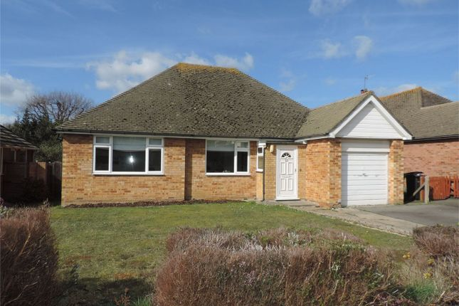 Thumbnail Detached bungalow to rent in Kenton Close, Bexhill On Sea, East Sussex