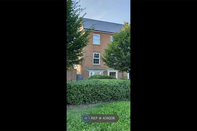 Thumbnail Terraced house to rent in Crocus Drive, Sittingbourne