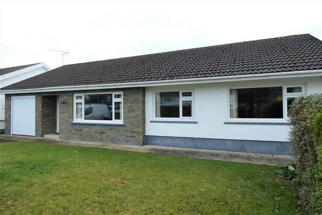 3 bed bungalow to rent in Penygraig Drive, Templeton, Narberth SA67