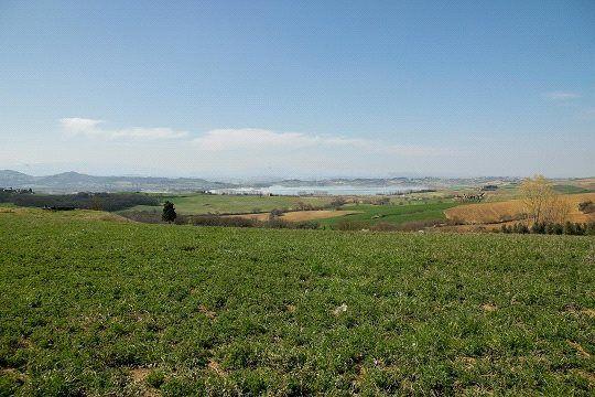 Picture No. 09 of La Manovella, Castiglione Del Lago, Umbria