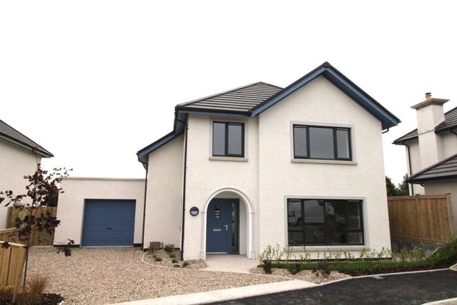 Thumbnail Detached house for sale in Whiteways Mews, Mountain Road, Newtownards