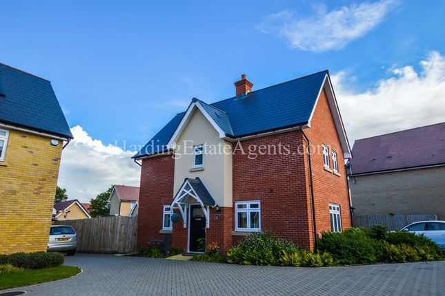 Thumbnail Detached house for sale in Beehive Lane, Hawkwell, Essex