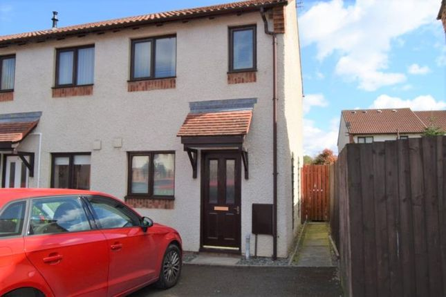 Thumbnail Semi-detached house to rent in Wadsworth Road, Carlisle