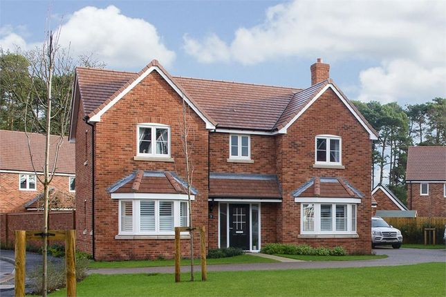 """Thumbnail Detached house for sale in """"Aston"""" at Hollybush Lane, Burghfield Common, Reading"""
