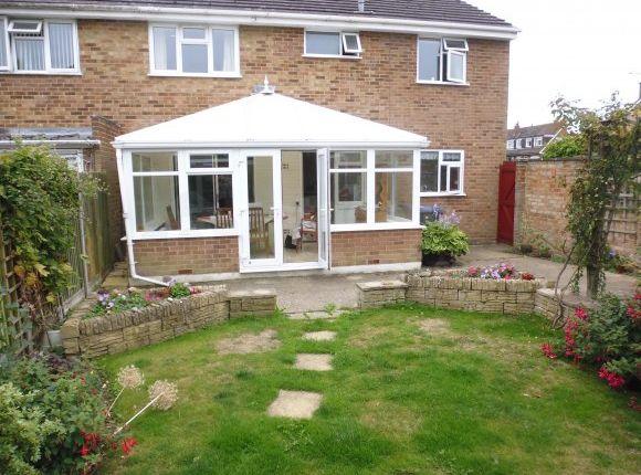 Thumbnail Semi-detached house to rent in Salisbury Road, Canterbury, Kent