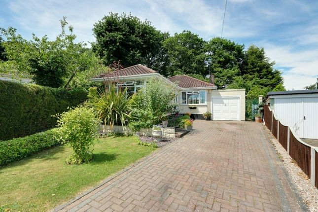 Thumbnail Detached bungalow for sale in Mountain Ash Close, Leigh-On-Sea