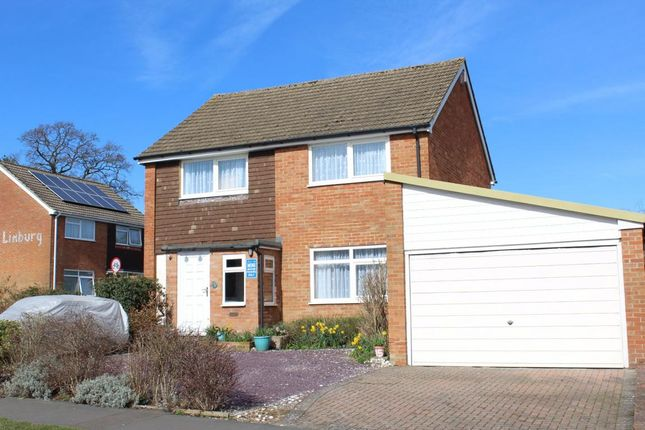 Thumbnail Detached house for sale in Willow Way, Farnham