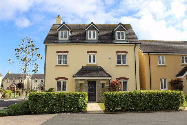 Thumbnail Detached house for sale in Honeyhill Grove, Lamphey, Pembroke