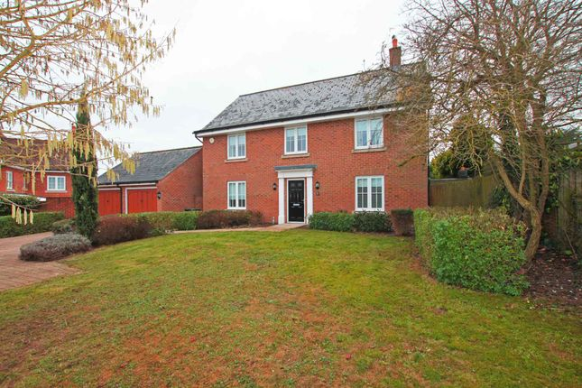 Thumbnail Detached house to rent in Meadow Lane, Newmarket
