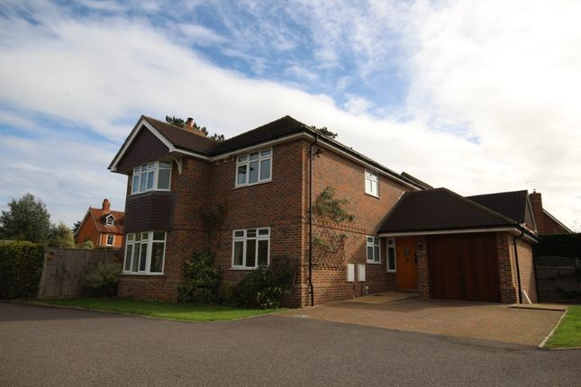 Thumbnail Detached house to rent in Wargrave Road, Twyford