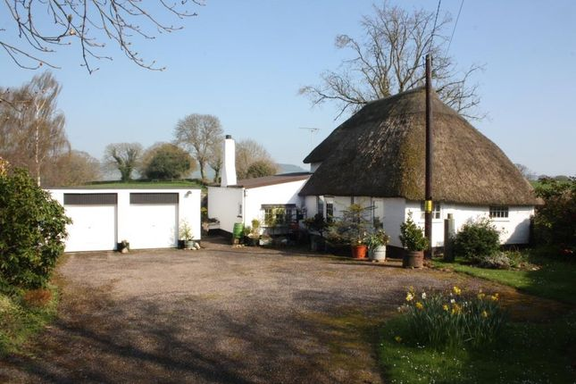Thumbnail Detached house for sale in Higher Metcombe, Ottery St. Mary