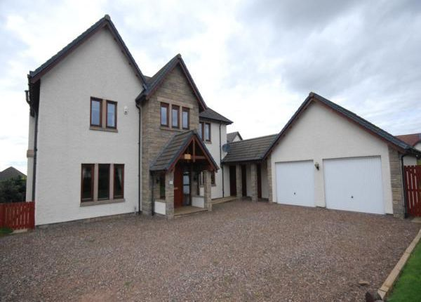 Thumbnail Detached house to rent in Craigie Hill, Drumoig, Leuchars, St. Andrews