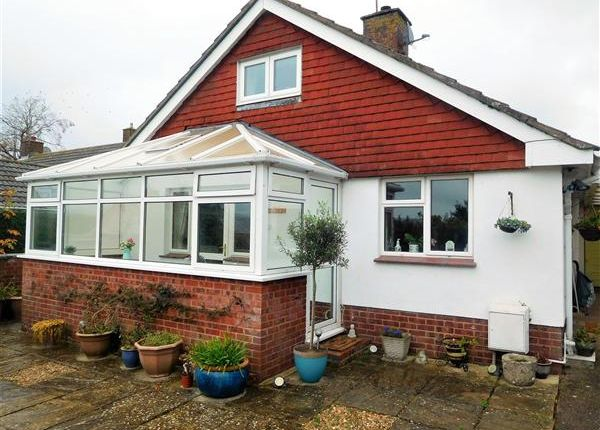 Thumbnail Detached house for sale in Oak Close, Ottery St. Mary