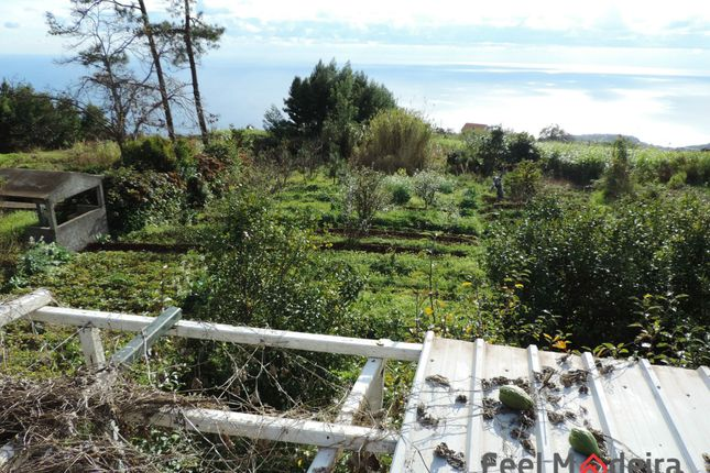 Land for sale in Ponta Do Sol, Ponta Do Sol, Ponta Do Sol
