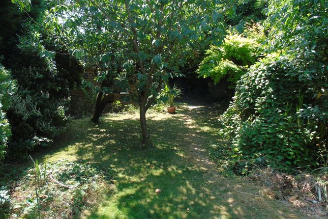 Thumbnail Bungalow for sale in The Avenue, Mortimer Common, Reading, Berkshire