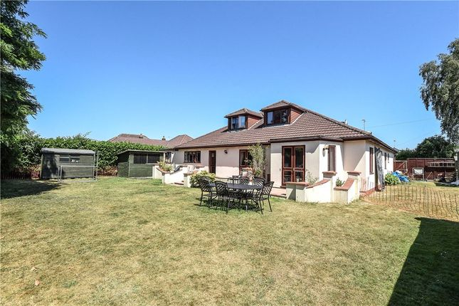 Thumbnail Detached bungalow for sale in Ivor Road, Corfe Mullen, Wimborne