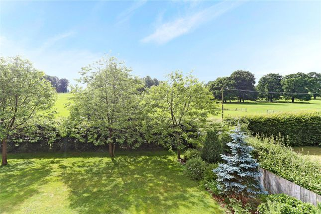 East Tisted Property For Sale