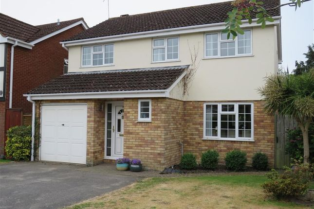 Thumbnail Property to rent in Pelican Mead, Hightown, Ringwood