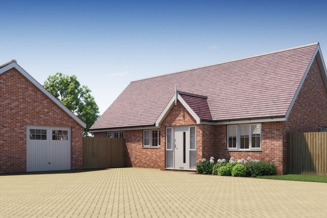Thumbnail Detached bungalow for sale in Spingfield Meadows, Little Clacton, Clacton On Sea