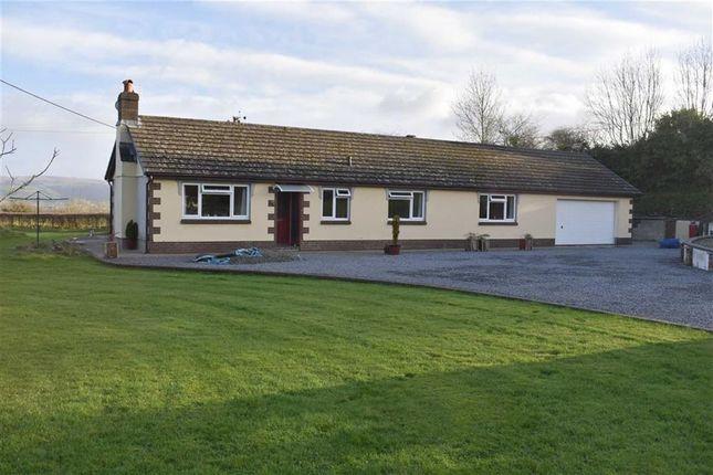 Thumbnail Detached bungalow for sale in Llanwenog, Llanybydder